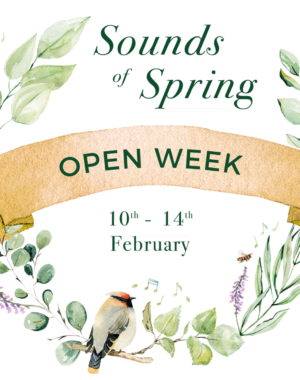 Sounds of Spring Open Week